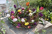 Wreath of Salix erythroflexuosasa with colorful tulipa