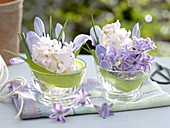 Mini bouquets of Hyacinthus and Crocus 'Striped Beauty'