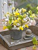 White and yellow spring bouquet of Prunus (cherry), Cornus mas