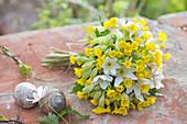 White-yellow bouquet of Primula veris