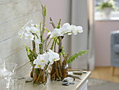 Modern arrangements in glass containers with driftwood as plug-in aid