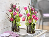 Tulipa in glass containers with betula as plug-in aid