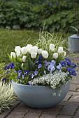 Blau-weiß bepflanzte Frühlingsschale