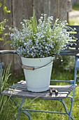 Enameled bucket with myosotis and grasses on folding chair
