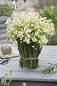 Camomile bouquet in vase covered with hordeum