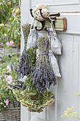 Bouquets of Lavender (Lavandula) and Achillea (Yarrow)