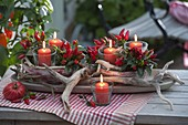 Lanterns with ornamental peppers, chili 'fire kisses'