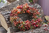 Wreath made of mixed roses (rosehip) on firewood stacks