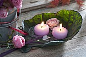 Cabbage leaf as a candle holder, leaf of red cabbage with flowers