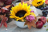 Small bowl with helianthus, Rose and leaves