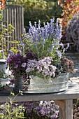 Planted zinc tub with Perovskia 'Lacey Blue', Sedum