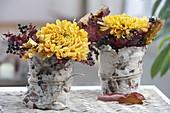 Chrysanthemum (autumn chrysanthemum) blossoms with leaves