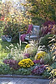 Autumn bed with perennials and grasses, Pennisetum 'Sky Rocket'