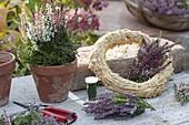 Kranz aus Calluna vulgaris (Knospenbluehender Besenheide)
