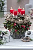 Basket planted with Gaultheria procumbens