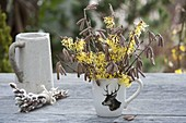 Small Corylus avellana and Hamamelis branches bouquet