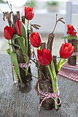 Tulipa (tulip) in glass tubes with Corylus avellana branches