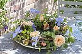 Kranz aus Rosa 'Candlelight' (Rosen), Clematis 'Perle D'Azur' (Waldrebe)