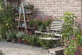 Gravel terrace with old ladder as shelf and wooden bench