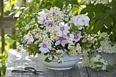Elder flowers (Sambucus nigra) bouquet, chamomile