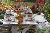 Autumn table decoration with garland of autumn leaves and rosehips