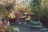 Small autumn terrace between grasses and groves
