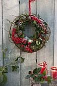 Wreath of round-bent vine of Rosa (Rose), Ilex (holly)