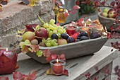 Wooden fruit bowl filled with grapes, plums
