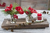 Small Hippeastrum (Amaryllis) and Pinus (pine) bouquets