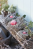 Red balls placed as decoration in empty bird's nests