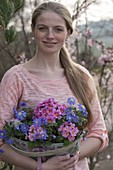 Young woman carrying small tub with primula acaulis and anemone