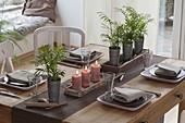 Table decoration with Chamaedorea elegans in zinc pots