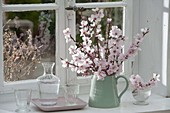 Flowering Prunus dulcis branches in green pitcher by the window