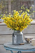 Spring bouquet with branches of forsythia and corylus