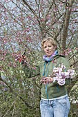 Woman cutting Prunus 'Accolade' branches for bouquet