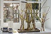 Small bouquets of different-colored Cornus branches