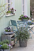 Spring terrace with herbs and edible flowers
