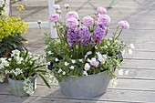Zinc tub planted in pink-white