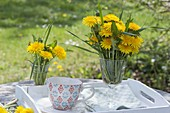 Small bouquet of Taraxacum (dandelion) in glasses