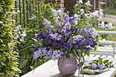 Blue-violet bouquet from Syringa, Aquilegia and Graes