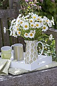White bouquet of Leucanthemum vulgare (Margerite) in pitcher