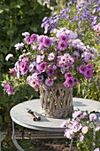 Roses, pink autumn bouquet of aster (white wood aster) in basket vase