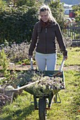Woman clearing vegetable garden in autumn