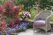 Autumn patio bed in blue and red