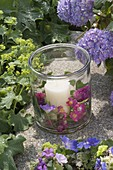 Large glass as a lantern with Rosa 'Maria Lisa' flowers