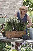 Woman planting spank basket with herbs