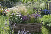 Perennials and grasses in a bed with hazel-wicker border