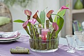 Lanterns with giant kiwi and Zantedeschia (Calla)