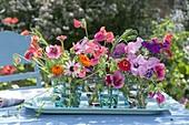 Small summer flowers bouquet on tray, Zinnia (Zinnia)