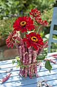 Zinnia bouquet, vase covered with Borlotti beans